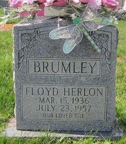 Floyd Herlon Brumley