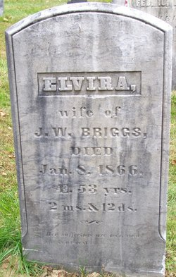 Elvira <i>Hatch</i> Briggs