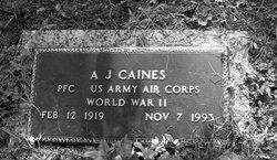 Arthur J. A. J. Caines