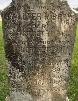 Walter R Bray