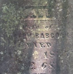 Jane <i>Wallis</i> Babcock