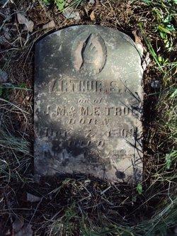 Arthur S. True
