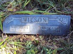 Marcellus Wilson