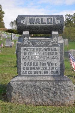 Peter Z Wald