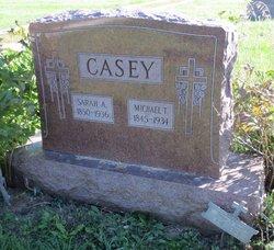 Michael T Casey