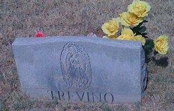 Maria Andrea <i>Cantu</i> Trevino