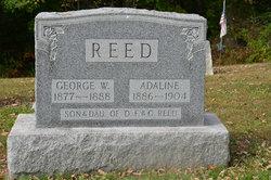 Adaline Reed
