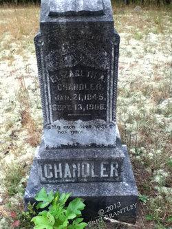 Elizabeth A <i>Dryden</i> Chandler