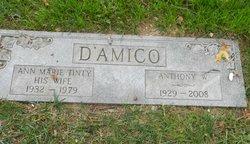 Anthony Tony D'Amico