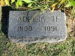 Adelia H. Hoag