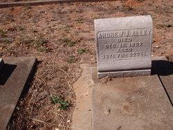 Andrew Jackson Alley, Jr
