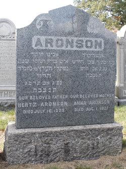 Hertz Aronson