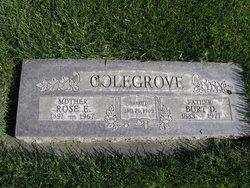 Rose E. <i>Witherell</i> Colegrove