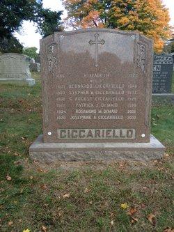 Hertha H. <i>Honig</i> Ciccariello