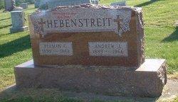 Andrew J Hebenstreit