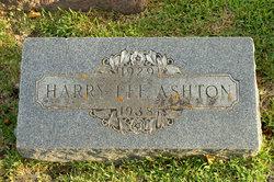 Harry Lee Ashton