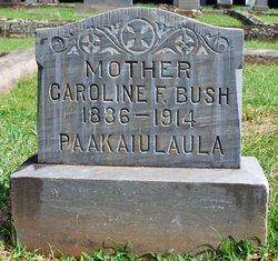 Caroline <i>French</i> Bush