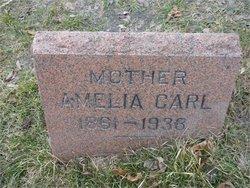 Amelia <i>Raup</i> Carl