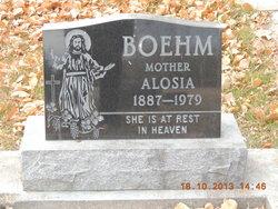Alosia <i>Garman</i> Boehm