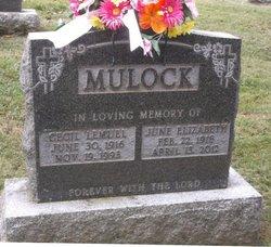 June Elizabeth <i>Rodenhizer</i> Mulock
