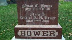 Almon Greenleaf Bower
