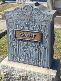 Anton Akrop