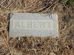Albert H. Ames