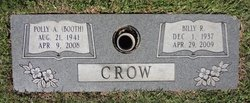 Polly Helen <i>Booth</i> Crow