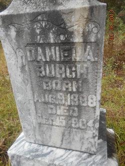 Daniel Alfred Burch