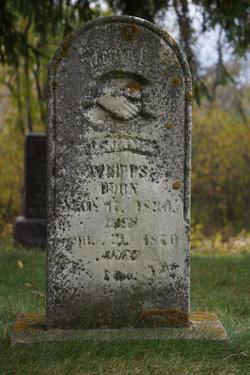 Benjamin Whipps