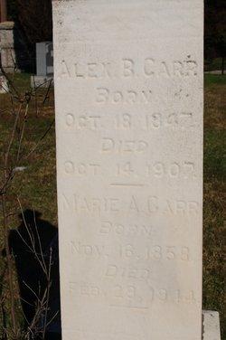 Alexander B. Carr