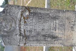 Mary J <i>Roberts</i> Adams