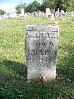 William M Ackles