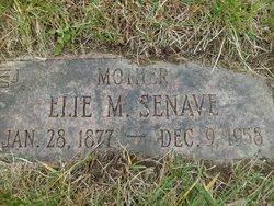 Elie Senave