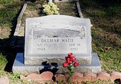 Delmar Watie