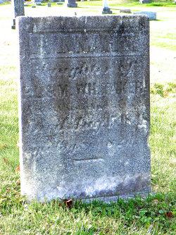 Hannah T. Whitaker