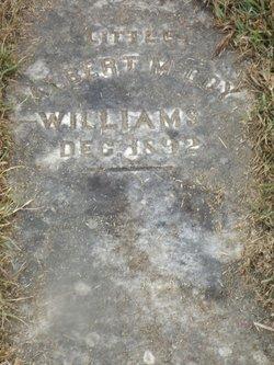 Albert McCoy Williams
