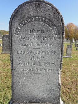 Louisa T Downing