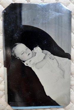 Winifred F. Dennis