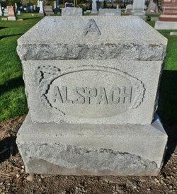 Richard W Alspach