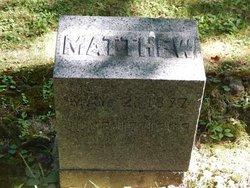 Mathew J Davison