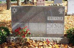 Celia <i>Cohen</i> Brenner