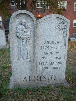 Andrew Aloisio