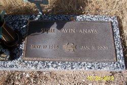 Susie Lavin Anaya