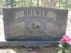 James Allen Brewer