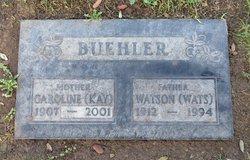 Watson Stanley Buehler