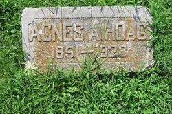 Agnes A Hoag
