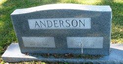 James Henderson Anderson