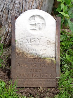 Daisy B Ambrose