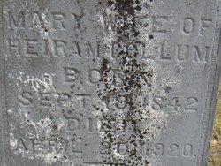 Mary W <i>Hartley</i> Collum